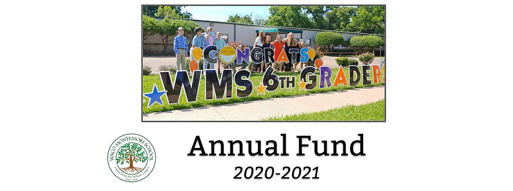 2020-2021 WMS Annual Fund